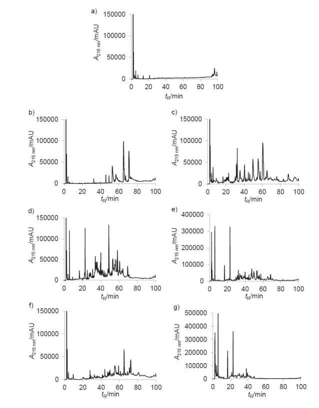 Reversed phase-HPLC profiles of undigested dromedary milk proteins (UDMP) and their hydrolysates (DMPHs): a) UDMP, with b) pepsin, c) trypsin, d) α-chymotrypsin, e) pancreatin, f) papain and g) pronase