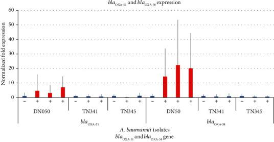 Duplex real-time RT-PCR analysis of the bla OXA-51 and bla OXA-58 mRNA relative expression in three A. baumannii isolates. The error bars represent the deviation for the normalized fold expression of bla OXA-51 and bla OXA-58 in three isolates which were positive or negative for the IS Aba3 upstream of the bla OXA-58 gene. −: not induced; +: induced.