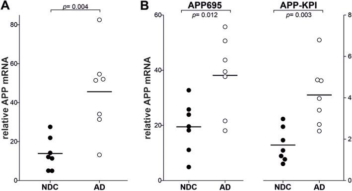 Increased APP mRNA in the frontal cortex of AD patients. Relative mRNA expression of transcripts for a total APP, and the b APP-KPI and APP-695 splice variants, analyzed by q RT-PCR in frontal cortex tissue from NDC ( n = 7) and AD subjects (Braak stages V–VI, – = 7). To analyze APP transcripts, specific Power SYBR® Green PCR Master Mix primers were employed and the specificity of the PCR products was confirmed by analyzing the dissociation curves. Transcript levels were calculated by the comparative 2 −ΔCt method with respect to 18S rRNA from the same cDNA and expressed as the mean ± SEM: p