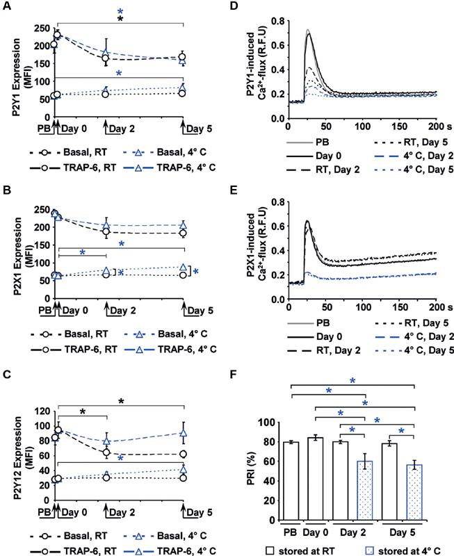 Expression and function of purinergic receptors. The mean fluorescence intensities (MFI) of basal or 10 μM TRAP-6-stimulated receptor expression, detected by flow cytometry, are shown for P2Y1 ( A ), <t>P2Y12</t> ( B ) and P2X1 ( C ). The function of the P2Y1 ( D ) and of the P2X1 ( E ) receptor was measured by calcium-induced fluorescence after selective stimulation, shown as mean values in relative fluorescence units (RFU). The function of the P2Y12 receptor ( F ) is expressed as platelet reactivity index (PRI) determined by the flow cytometric VASP assay. Mean ± SEM; n = 6; * p