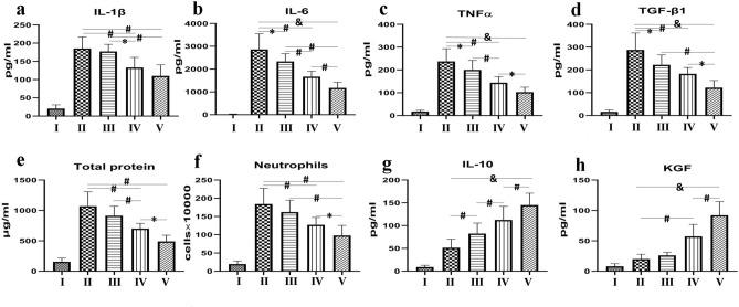 Effects of ADSCs and sevoflurane on total protein, neutrophil infiltration, and cytokine and chemokine responses in BALF. ADSCs reduced CLP-induced increases in TNF-α, IL-6, IL-1β, protein, and TGF-β1 levels and neutrophil counts. Sevoflurane also significantly reduced TNF-α, IL-6, and TGF-β1 levels. IL-10 and KGF were significantly increased in the ADSC group. These changes were increased by ADSC + sevoflurane treatment. ( a ) IL-β1; ( b ) IL-6; ( c ) TNF-α; ( d ) TGF-β1; ( e ) total protein; ( f ) neutrophil count; ( g ) IL-10; and ( h ) KGF. Data presented as mean ± standard deviation. *p