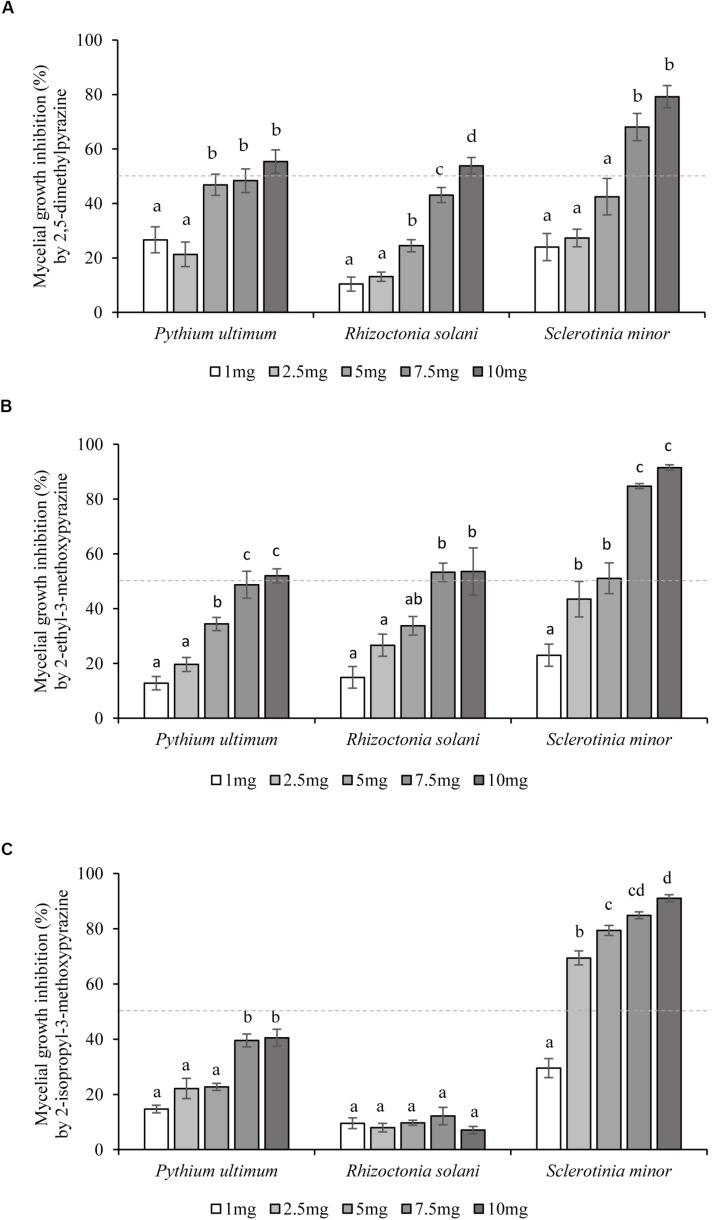 Inhibition of soilborne plant pathogens growth by single synthetic Lysobacter capsici AZ78 VOCs. The inhibition effect of five concentrations (1–10 mg/Petri dish) of each synthetic VOC: (A) 2,5-dimethylpyrazine, (B) <t>2-ethyl-3-methoxypyrazine,</t> and (C) 2-isopropyl-3-methoxypyrazine, was assessed 48 h after simultaneous incubation with the soilborne plant pathogens. The percentage of inhibition was calculated by comparing the radial growth of treated pathogens to the radial growth of pathogens from untreated Petri dishes used as control. Presented values for each treatment are means ± standard error pooled from two experiments each having six or seven replicates. Dotted line indicates the 50% inhibition level. For each soilborne plant pathogen, bars with different letters were found to be significantly different according to Tukey's HSD test ( p ≤ 0.05).