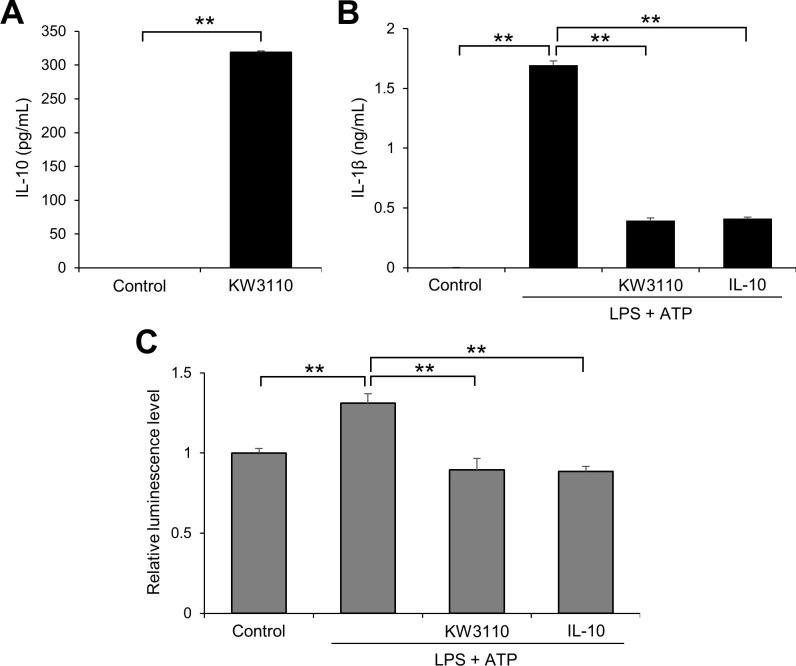 KW3110 treatment induces IL-10 production and suppresses IL-1β production and caspase-1 activity in human monocytes. (A-C) Human monocytes were treated with KW3110 (100 μg/mL) for 24 h. IL-10 levels in the supernatant were measured by ELISA (A). The cells were then treated with IL-10 (1 μg/mL) and LPS (10 μg/mL) for 4 h and ATP (2 mM) for 1 h. IL-1β levels in the supernatant were measured by ELISA (B) and the supernatant was analyzed by Caspase-Glo 1 inflammasome assay (C). Values indicate means ± SEM (triplicate data). Statistical differences were analyzed by unpaired t -tests for (A) and ANOVA followed by Tukey's test for (B, C) (**, P