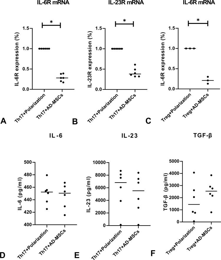 Ad-MSCs suppressed the expression of cytokines and their receptors. Low levels of expression of IL-6R and IL-23R mRNAs in co-cultures under the Th17 polarized condition ( A, B ), and low levels of IL-6R mRNA under the Treg polarized condition ( C , n=3). Levels of IL-6, IL-23, and TGF-β proteins showed similar results in CD4 + T cell co-cultures under either of the polarized conditions ( D–F ). * p