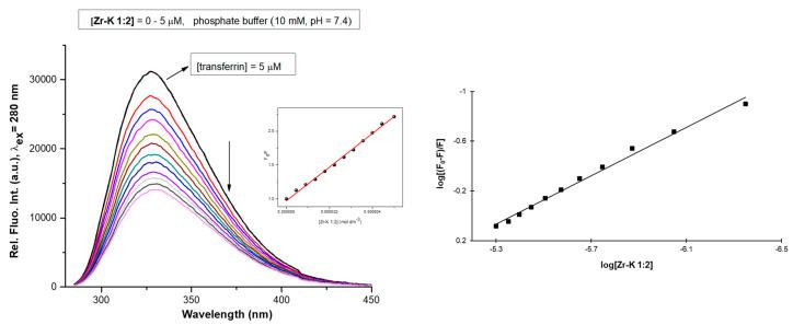 Tryptophan fluorescence quenching spectra of <t>transferrin</t> (5 µM) in phosphate buffer (10 mM, pH 7.4) with increasing concentrations of Zr-K 1:2 (0–5 µM). The insert shows a plot of F 0 /F versus the POM concentration. (Right) Derived Stern-Volmer plot used to calculate the association constant.