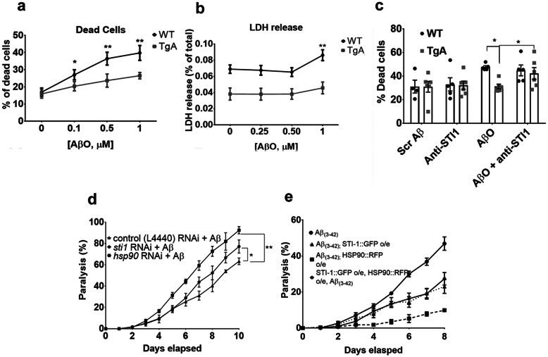 Overexpression of STI1 protects both  C. elegans  and primary hippocampal mouse neurons from Aβ-toxicity.  a  The average percent of dead cells ((# of dead cells)/(# of live + # of dead cells))×100) in E17.5 primary hippocampal neuronal cultures from WT or TgA embryos. Cells were imaged in 4 well dishes from 8 random fields ( N =6 individual embryos/genotype). Dishes were treated with either no Aβ, 0.1, 0.5 or 1μM AβOs for 48h.  b  Likewise, WT or TgA primary hippocampal neurons were treated with 0, 0.25, 0.5 or 1μM for 48h, and LDH release was measured using colorimetric assay, read at 450nm.  N =3–4 individual embryos for WT hippocampal cultures for each condition and  N =5 individual embryos per condition for TgA hippocampal cultures.  c  Quantification of percentage of cell death in hippocampal neuronal cultures treated for 48h with 1μM scrambled Aβ control, antibody against STI1 (1:500), AβO alone (1μM) or dishes treated with both AβO (1μM) and anti-STI1 (1:500). At least four individual embryos were used for each condition and genotype.  d  Percentage of body paralysis over 10days in nematodes expressing Aβ (3–42)  (strain CL2006 (dvIs2 [pcL12 (unc-54/human Aβ peptide minigene)+pRF4 ]) in the bodywall muscle and treated with empty vector control RNAi (black triangle),  sti-1  RNAi (black circle), or  hsp-90  RNAi (black square).  e  Percentage of paralysis in worms expressing Aβ ( 3–42)  (black circle), Aβ ( 3–42)  worms overexpressing HSP90 in body wall (strain AM988 (rmIs347( unc-54p::HSP-90::RFP )) (black square), Aβ ( 3–42)  worms overexpressing STI-1 in muscle cells (strain PVH40 (PPI1972 ( unc-54p::STI-1::GFP);dvIs2 ))) (black triangle) and Aβ (3–42)  worms overexpressing both STI-1 and HSP-90 in the bodywall muscle (strain PVH71 (rmIs347( unc-54p::HSP-90::RFP );( unc-54p::STI-1::GFP);dvIs2 ) (black stars). For  C. elegans  experiments, 100 age synchronized animals were used for analyses. For panels a and b, data were analyzed using Two-Way ANOVA, with S