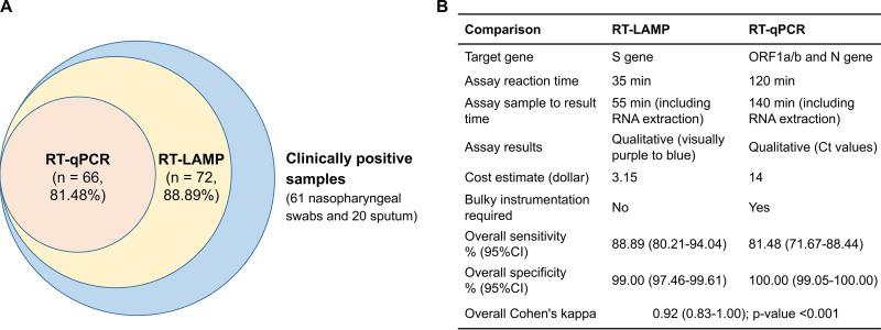 Comparison of the RT-LAMP and RT-qPCR assays for <t>COVID-19</t> detection in two cohorts. Eighty-one clinically positive samples consisted of 35 nasopharyngeal swabs from cohort I and 46 nasopharyngeal swab and sputum samples from cohort II, which were determined to be positive based on the combined criteria of positive RT-qPCR detection ( n = 66) or positive NGS confirmation ( n = 15).