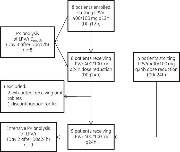 Flow chart of COVID-19 ICU patients receiving lopinavir/ritonavir 400/100 mg q12h as oral solution through a nasogastric tube, then receiving 400/100 mg q24h. Pharmacokinetic analysis timings are shown. AE, adverse event; LPV/r, lopinavir/ritonavir; PK, pharmacokinetic.