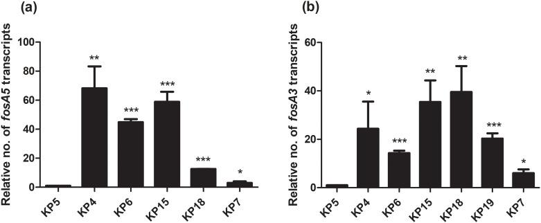 Relative fosA5 and fosA3 expression levels of NDM and OXA-48-coproducing K . pneumoniae . qRT-PCR assay of fosA5 (a) and fosA3 (b) expression was performed in K . pneumoniae isolate KP5, KP4, KP6, KP15, KP18, KP19, and KP7. The relative number of transcripts of fosA5 and fosA3 were normalized to 16S rRNA expression and calculated using the 2 -ΔΔct method compared to the expression of fosfomycin-susceptible K . pneumoniae isolate KP5. p -values were calculated using unpaired t-test (*, p -value
