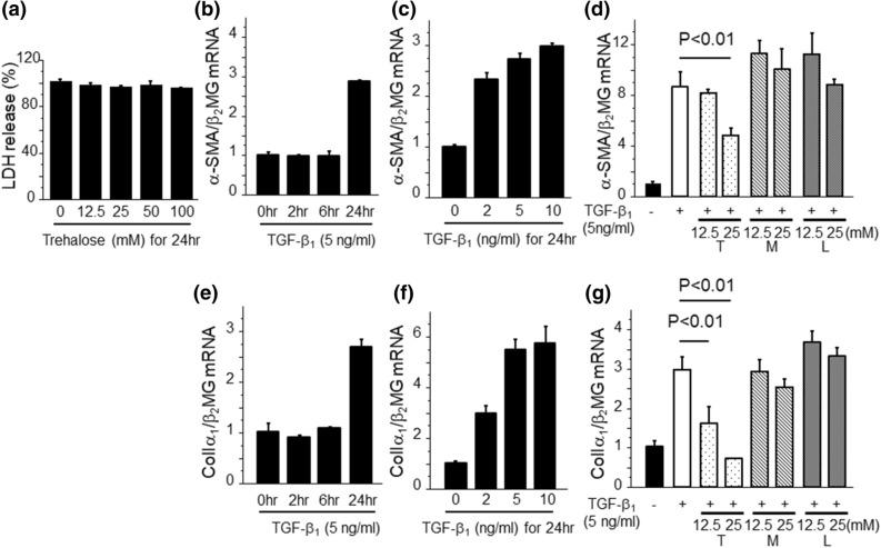 Trehalose reduced the expression of α-SMA and ColIα 1 mRNA expression by the stimulation with TGF-β 1 in PMCs. ( a ) The LDH release of cells following 24 h incubation with trehalose. LDH release were assessed by absorbance at 490 nm and expressed as relative proportions to control samples without trehalose ± SEM (n = 3 cell preparation/group). ( b , c ) TGF-β 1 induced α-SMA mRNA expression in a time- and dose-dependent manner (n = 3 cell preparation/group). ( d ) The effects of trehalose on TGF-β 1 -induced α-SMA mRNA expression (n = 3 cell preparation/group; T, trehalose; M, mannitol; L, l -glucose). PMCs were pre-treated with either trehalose, mannitol or l -glucose for 30 min prior to TGF-β 1 stimulation. ( e , f ) TGF-β 1 induced increase of ColIα1 mRNA expression in a time- and dose-dependent manner (n = 3 cell preparation/group). ( g ) The effects of trehalose on TGF-β 1 -induced ColIα 1 mRNA expression (n = 3 cell preparation/group). PMCs were pre-treated with either trehalose, mannitol or l -glucose for 30 min prior to TGF-β 1 stimulation. Data are expressed as mean ± SEM. Each experiment was performed two times independently.
