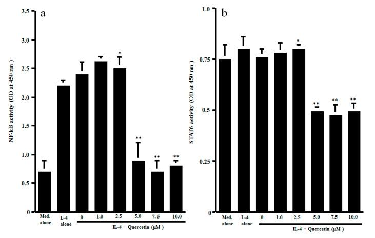 Influence of quercetin on transcription factor activation in CD4 + T cells in vitro. CD4 + T cells (1 × 10 6 cells/mL) were stimulated with 10.0 ng/mL IL-4 in the presence of various concentrations of quercetin for 1 h. Activation of transcription factors NF-κB ( a ) and STAT6 ( b ) was assessed by ELISA. The results were expressed as the mean OD at 450 nm ± SE of five subjects. * p > 0.05 versus IL-4 alone; ** p