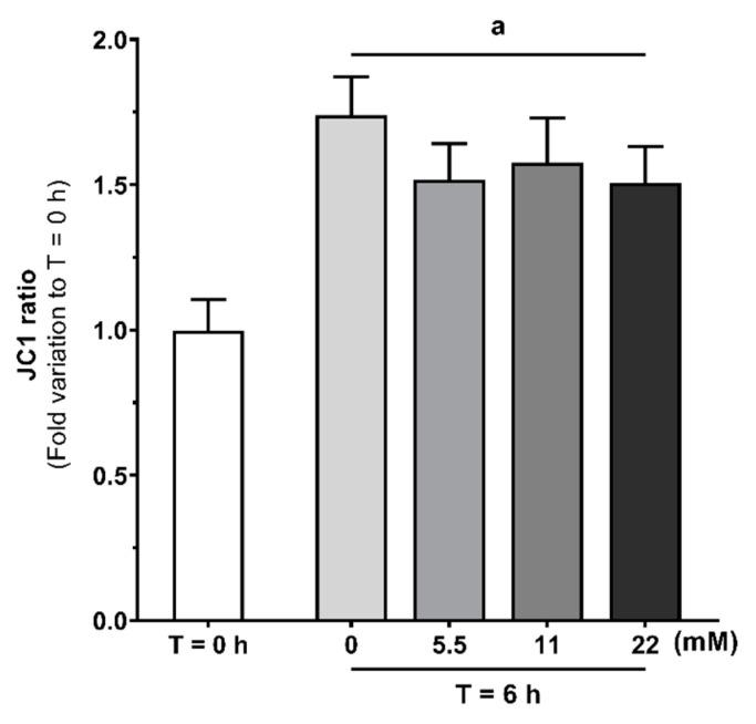 Evaluation of human spermatozoa mitochondrial membrane polarization at baseline (T = 0 h) and without or with glucose (0, 5.5, 11 and 22 mM) stimuli following 6 h in capacitation conditions, using the dye JC-1. Results are expressed as mean ± SEM ( n = 15 for each condition). Significantly different results are expressed as: ( a ) Relative to T = 0 h group.
