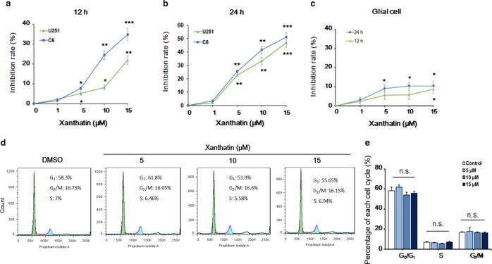 Xanthatin inhibits glioma cell viability without affecting the cell cycle. The effect of xanthatin on cell viability in glioma cells. U251 and C6 cells were incubated with xanthatin at the indicated concentrations for 12 h ( a ) or 24 h ( b ). Cell viability was determined by MTT assay. c The effect of xanthatin on cell viability in nonmalignant glial cells. Primary cultured rat glial cells were incubated with xanthatin at various concentrations for 12 or 24 h, followed by the MTT assay. d Xanthatin treatment had no apparent effect on the cell cycle distribution of glioma cells. C6 cells were incubated with xanthatin at the indicated concentrations for 12 h. Propidium iodide staining and flow cytometry were used to determine the proportion of cells in various phases of the cell cycle. e Statistical analysis of the cell cycle distribution in d . Statistical values are expressed as the mean ± SEM of three independent experiments. * P
