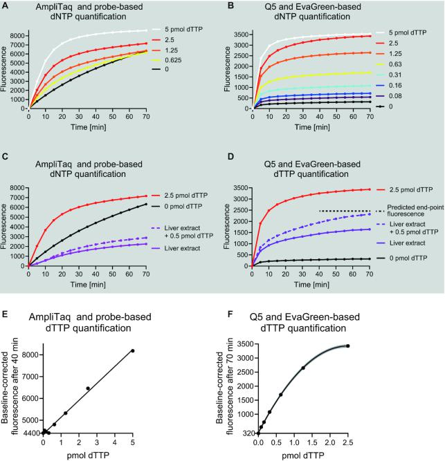Long synthetic DNA oligonucleotides, an inhibitor-resistant high-fidelity DNA polymerase and EvaGreen detection chemistry allow quantification of dNTPs from mouse liver extracts. ( A ) A representative quantification of dTTP using a published fluorometric probe-hydrolysis-based assay. For clarity, curves from three lowest standard samples (0.31–0.08 pmol) are not shown. ( B ) A representative quantification of dTTP using Q5 DNA polymerase, 197-nt template and EvaGreen detection chemistry. ( C , D ) dTTP signal generated by the fluorometric methods from a high concentration mouse liver extract with and without 0.5 pmol dTTP spike-in calibrant. The extract volume was adjusted to 2 μl per mg of initial tissue weight. The extract comprised half of the reaction. ( E , F ) Standard curves generated from the end-point baseline-corrected fluorescence values. The lowest y-axis value shows the background signal. Gray lines present the 95% confidence interval of a polynomial curve fit.