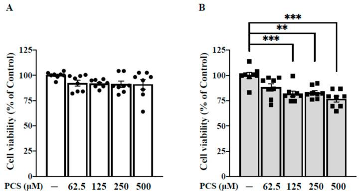PCS inhibits cell viability of HASMC in a time- and dose-dependent manner. ( A ) HASMCs were treated with various concentrations of PCS (0, 62.5, 125, 250, and 500 μM) for 24 h. ( B ) HASMCs were treated with various concentrations of PCS (0, 62.5, 125, 250, and 500 μM) for 48 h. Cell viability was determined using the colorimetric Alamar Blue assay. Data were expressed as mean ± standard deviation. Each experiment was replicated for three times. Data were analyzed with ANOVA (Dunnett's multiple comparisons test). ** p