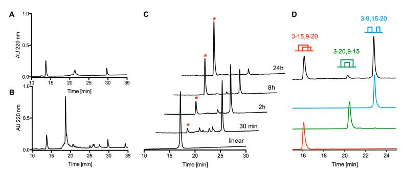 Chemical synthesis and folding of cdg14a. ( A ) HPLC chromatogram of a crude linear cdg14a eluted on an analytical C18 column using a gradient ranging from 5% to 65% solvent B in 30 min with 1 mL/min flow rate. ( B ) HPLC chromatogram of a crude linear cdg14a modified with 2-aminoethyl methanethiosulfonate hydrobromide (MTSEA) (HPLC conditions are the same as in panel A). ( C ) oxidative folding of cdg14a monitored by HPLC, using a C18 column and a gradient ranging from 15% to 45% solvent B, with a flow rate 1 mL/min. Single asterisk denotes the native-like fold of cdg14a. ( D ) zoom-in on 4 h oxidative folding time point (black HPLC trace) with all possible folding isomers identified at 220 nm. The red trace represents the native folding isomer with the globular-like connectivity Cys3-Cys15, Cys9-Cys20; green trace represents ribbon-like folding isomer with the Cys3-Cys20, Cys9-Cys15 connectivity; blue trace represents the fast folding product with the bead-like connectivity Cys3-Cys9, Cys15-Cys20. The traces were collected using the same gradient as described for panel ( C ).