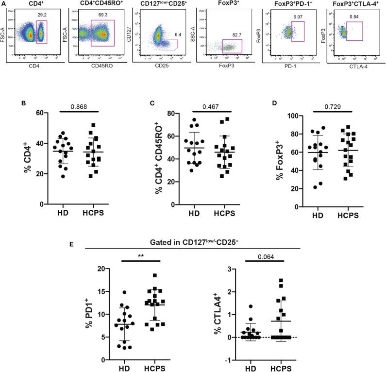 Increase frequency of memory CD4 + Treg PD-1 + on HCPS survivors. (A) Gating strategy of a representative sample showing CD4 + , CD4 + CD45RO + , CD127 low/− CD25 + , CD127 low/− CD25 + FoxP3 + , memory Treg PD1 + , and memory Treg CTLA-4 + cells. (B) Frequency of total CD4 + T cells gated in live PBMC. (C) Frequency of memory CD4 + T cells CD4 + CD45RO + . (D) Frequency of memory CD4 Treg (CD4 + CD45RO + CD25 + CD127 low/− FoxP3 + ). (E) Frequency of memory Treg PD-1 + (left) and memory Treg CTLA-4 + (right). Data represented as dots (HD n = 15) and squares (HCPS n = 16), indicating the mean ± SD. ** P = 0.0021 by unpaired Student's t -test.