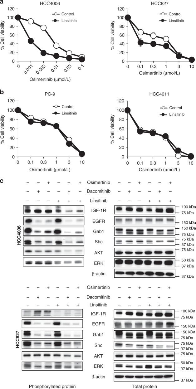 IGF-1R inhibitor inhibited the viability of AXL-low tumor cells exposed to osimertinib. AXL-low expressing ( a ) and AXL-high expressing ( b ) EGFR -mutated NSCLC cell lines were treated with various concentrations of osimertinib for 72 h in the presence or absence of linsitinib (1 μmol/L), and cell viability was determined. The percentage of growth is shown relative to untreated controls. Data are presented as mean ± s.d. Each sample was assayed in triplicate, with each experiment repeated at least three times independently. c HCC4006 and HCC827 cells were treated with osimertinib (30 and 300 nmol/L, respectively), dacomitinib (30 and 300 nmol/L, respectively), and/or linsitinib (1 μmol/L). After 72 h, the cells were lysed, and the indicated proteins were detected by western blotting. Data shown are representative of three independent experiments. Bars indicate s.d.