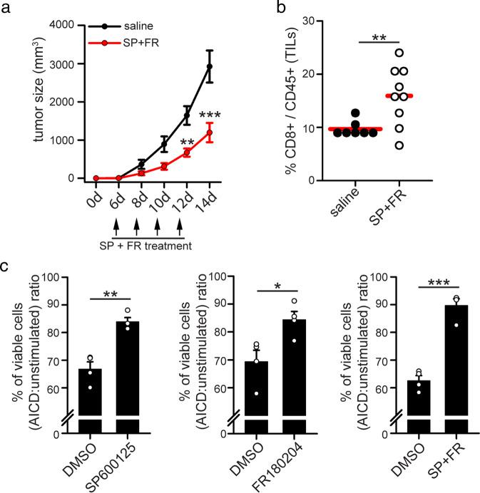 Drugs targeting MAPK proteins reduces tumor growth in vivo and increases T cell survival. a, b 5*10 5 MC38 tumor cells have been inoculated s.c. into the right flank of WT mice. On the indicated days, mice have been injected i.p with SP600125 and FR18024, and tumor volume assessed ( a , n = 7 saline; n = 9 SP + FR-treated). After 14 days, TILs have been isolated from tumor mass and the percentage of CD8 + T cells among all CD45 + TILs quantified by flow cytometry ( b , n = 7 saline; n = 9 SP + FR-treated). c T cells have been isolated from the spleen of 14 days-old MC38-derived tumor-bearing WT mice and cultured in vitro for 10 days in presence of UV-irradiated MC38 cells, plus IL2 and IL15, to expand tumor-reactive T cells. After 10 days, CD8 + T cells have been magnetically purified and re-stimulated for the indicated time with plate-coated anti-CD3 antibodies to induce AICD in presence or not of SP600125 and/or FR180204. Graphs show the relative viabilities (AICD:unstimulated ratio) of murine T cells stimulated 6 h for AICD (percentage of annexinV neg 7AAD neg cells assessed by flow cytometry) ( n = 4). Data are shown as mean ± SEM. Significance is indicated as follows: * p