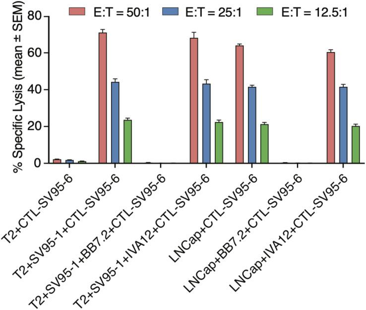 <t>MHC</t> Class I restriction assay. MHC class I restriction assay was performed by a cytotoxic assay of testing SV 95 -specific CTL lines against SV 95–1 peptide-pulsed T2 cells with the addition of blocking antibody against MHC class I molecule (anti-HLA-A2, <t>BB7.2),</t> or MHC class II molecule (anti-MHC class II, IVA 12). SV 95–6 specific CTL clone was a representative among the SV 95 CTL lines. The cytotoxicity of SV 95–6 specific CTLs was completely blocked by MHC I antibody, but not at all by MHC II antibody.
