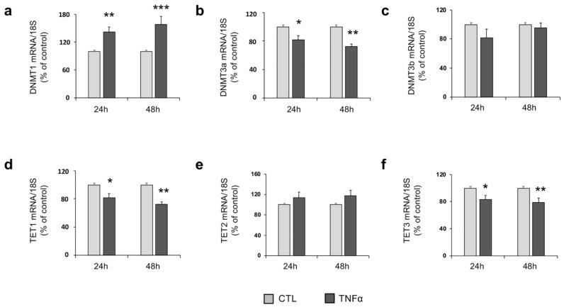 TNFα affects DNA Methyltransferases (DNMTs) and Ten Eleven Translocation (TETs) mRNA levels. ( a ) DNMT1, ( b ) DNMT3a, ( c ) DNMT3b, ( d ) TET1, ( e ) TET2 and ( f ) TET3 mRNA expression in untreated (CTL) and TNFα-treated (10 ng/mL) hfNBMs at 24- (left) and 48-h (right) of stimulation, as detected by qRT-PCR. Data are normalized over 18S ribosomal RNA subunit and reported as percentage of CTL and displayed as mean ± SEM of three separate experiments performed in triplicate (unpaired Student's t -test; *** p