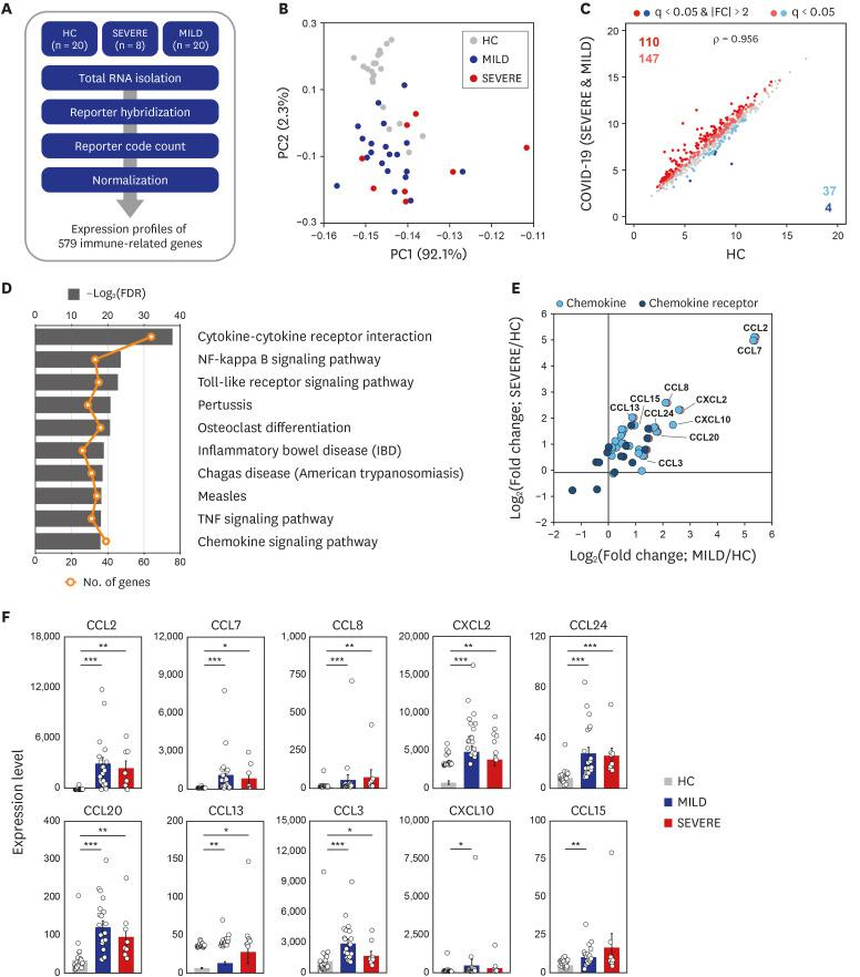 Transcriptome analysis reveals that immune gene expression profiles of COVID-19 patients are distinct to HC. ( A ) Schematic diagram of the immune transcriptome analysis in this study. ( B ) A result of principal component analysis of log2-transformed 579 immune gene expression levels. ( C ) The scatter plots representing 579 immune genes with the log2-transformed FPKM for COVID-19 patients compared to HC. ( D ) The ten most significantly enriched KEGG pathways of the 298 DEiGs from COVID-19 patients compared to HC. ( E ) Log2-transformed fold changes of chemokine and chemokine receptor genes from MILD (x-axis) and SEVERE (y-axis) vs. HC. ( F ) Expression levels (FPKM) of marked chemokines in (E). Error bar indicates standard error of mean. P values were calculated using Mann-Whitney U test and adjusted P values (FDR) were shown. COVID-19 = coronavirus disease 2019, HC = healthy controls, FPKM = fragments per kilobase exon-model per million reads mapped, KEGG = Kyoto Encyclopedia of Genes and Genomes, DEiG = differentially expressed immune gene, MILD = mild/moderate, SEVERE = severe/critical, FDR = false discovery rate, IBD = inflammatory bowel disease, TNF = tumor necrosis factor, CCL = C-C motif chemokine ligand, CXCL = C-X-C motif chemokine ligand. * P