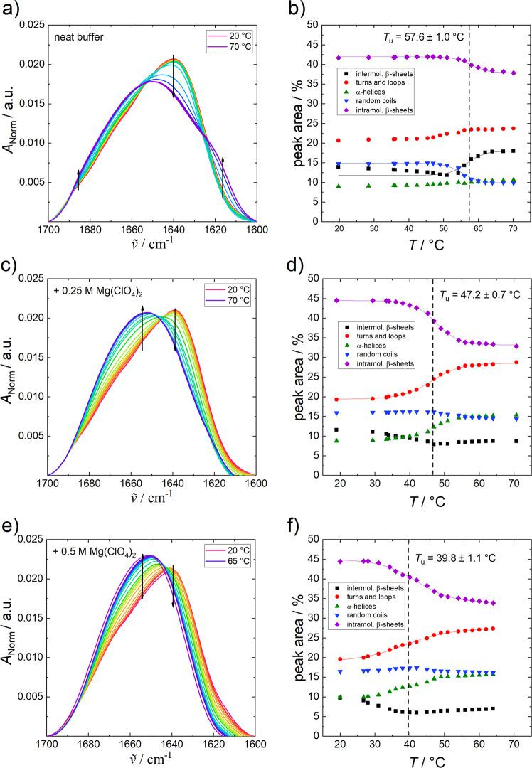 Changes to α-chymotrypsin FTIR spectra with temperature. Normalised temperature-dependent FTIR spectra of α-CT (50 mg mL −1 ) in neat buffer (+10 mM CaCl 2 ) ( a ), 0.25 M ( c ) and 0.5 M Mg(ClO 4 ) 2 ( e ) at ambient pressure and the corresponding secondary structural changes ( b , d , f ) obtained from the curve fitting procedure. Arrows indicate increasing temperature and the lines represent the Boltzmann fits to the experimental data using Eq. ( 3 ).