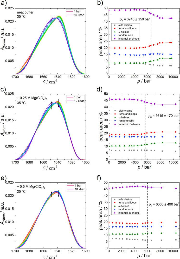 Changes to α-chymotrypsin FTIR spectra with pressure. Normalised pressure-dependent FTIR spectra of α-CT (50 mg mL −1 ) in ( a ) neat buffer (+10 mM CaCl 2 ) ( a ), ( c ) 0.25 M Mg(ClO 4 ) 2 and ( e ) at 35 °C, 0.5 M Mg(ClO 4 ) 2 at 25 °C, and the corresponding secondary structural changes ( b , d , f ) obtained from the curve fitting procedure. Arrows indicate increasing pressure and lines show the Boltzmann fits to the experimental data using Eq. ( 4 ).