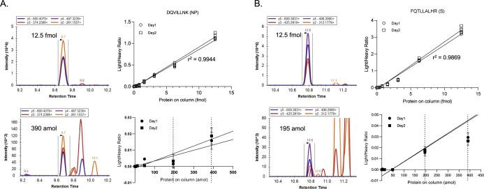 Chromatograms and calibration curves for two best target peptides used in the PRM assay for SARS CoV-2 spike protein and nuceloprotein. The summed area under curve values for the top four transitions of each peptide were taken to generate calibration curves for quantitation. The right panels display chromatograms obtained for each of transitions shown in different colors for (A) DQVILLNK (NP) and (B) FQTLLALHR (S). Three technical replicates were run on two separate days. The chromatograms on the left of each panel show a low and high standard from the SARS CoV-2 S and NP in a mucin background. Calibration curves were constructed from the PRM data (top right) and zoomed in (bottom right) displaying mean values at the low end of the curve to show the LOD (left dotted line) and LOQ (right dotted line).