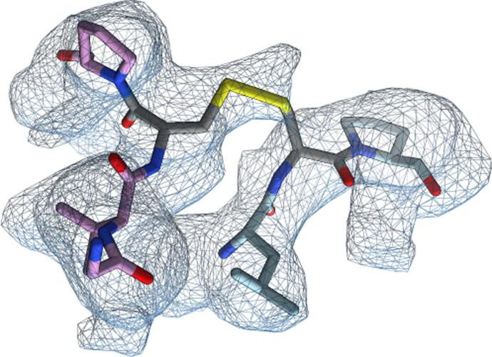 Cryo-EM structure of the closed SARS-CoV-2 DS S glycoprotein. Zoomed-in view of the designed disulfide bond with the corresponding region of cryo-EM density shown as a blue mesh.