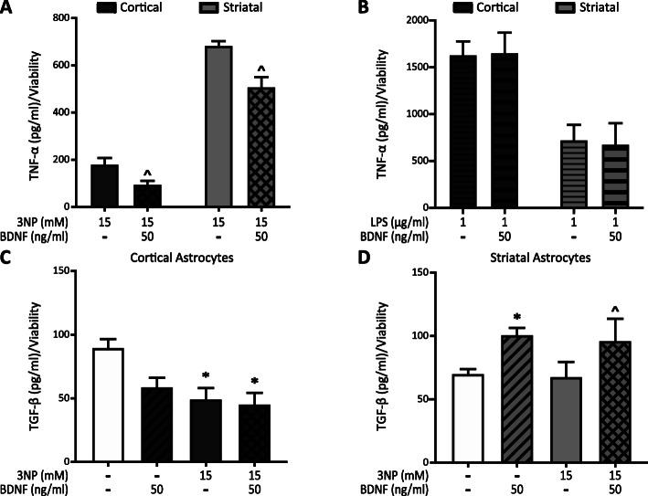 BDNF modifies astrocyte cytokine release. Cortical and striatal astrocytes were treated for 24 h with 3NP 15 mM with or without BDNF 50 ng/ml ( a ) or with LPS 1 μg/ml with or without BDNF 50 ng/ml ( b ). TNF-α release into the culture supernatant was assessed by ELISA and normalized to viability values obtained with the MTT assay for each experimental group. Data are the mean ± SEM of n = 3 independent experiments. Differences between two groups were analyzed by Student's t test. ^ p