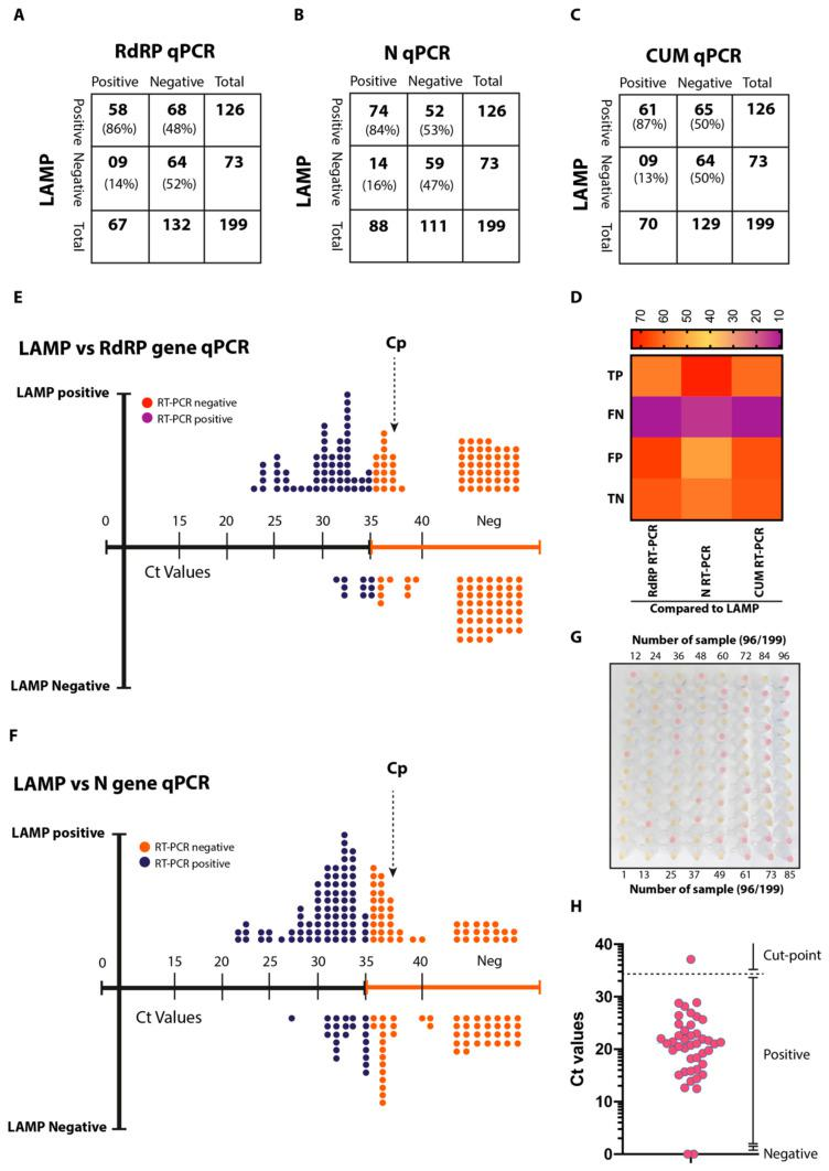 Clinical validation of ai-LAMP. ( A – C ) Comparative sample positivity between LAMP and RdRP <t>qRT-PCR</t> ( A ), LAMP and N qRT-PCR ( B ), LAMP and CUM qRT-PCR results ( C ). ( D ) The heatmap indicates the relative positive and negative samples among <t>three</t> assays. ( E ) Linearity chart comparing the LAMP positive/negative samples and their detection based on the RdRP gene-based qRT-PCR. ( F ) Linearity chart comparing the LAMP positive/negative samples and their detection based on the N gene-based qRT-PCR. ( G ) Naked eye detection of the first 96 samples out of the total 199 patients' samples were processed. ( H ) Recovery Ct values of the miRNA spiked before RNA extraction.