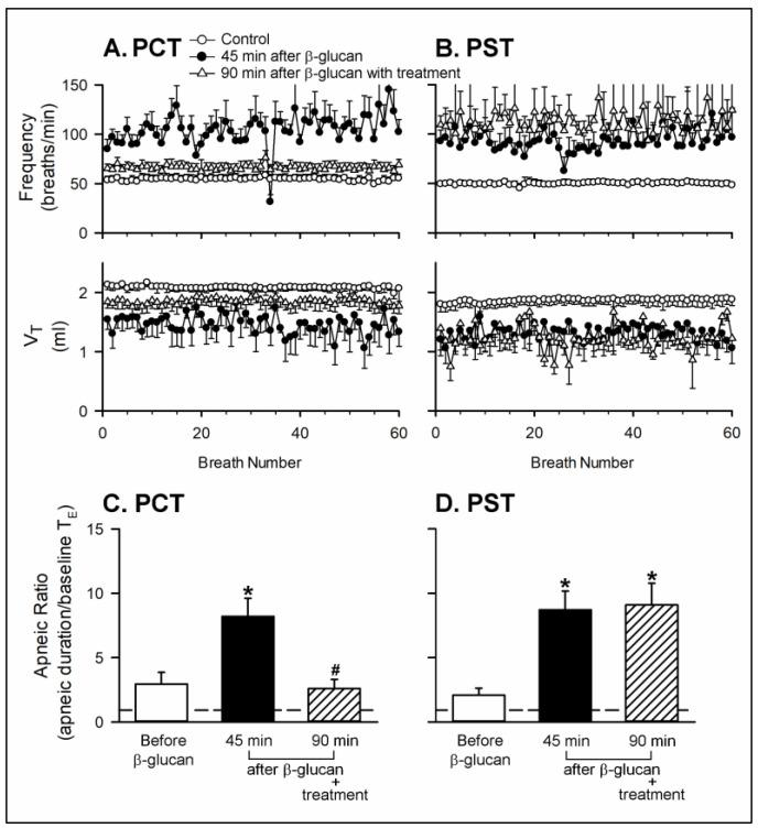 Effects of perineural capsaicin treatment (PCT) and perineural sham treatment (PST) on the enhancing effects of the intratracheal instillation of β-glucan on the baseline breathing pattern and apneic response to right-atrial injection of capsaicin in two groups of anesthetized, spontaneously breathing rats. ( A , B ): effects of PCT and PST on the intratracheal instillation of β-glucan on the baseline frequency and V T , respectively; ( C , D ): effects of PCT and PST on the intratracheal instillation of β-glucan on the apneic responses to capsaicin injection, respectively. Data are means ± SE ( n = 6). One-way ANOVA followed by Newman-Keuls post hoc test: *, significantly different from before β-glucan ( p