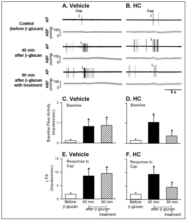 Experimental records illustrating the effects of treatment of vehicle or HC-030031 (HC, 8 mg/kg) on the β-glucan-induced potentiating on the responses of capsaicin-sensitive lung vagal (CSLV) afferents to capsaicin (Cap, 0.75 μg/kg; arrows) after intratracheal instillation of β-glucan (5 mg/0.1 mL/rat) in anesthetized, artificially ventilated rats. ( A , B ): treatment with vehicle or HC in two anesthetized, artificially ventilated rats (vehicle: 300 g; β-glucan: 290 g), respectively. AP, action potential; ABP, arterial blood pressure. ( C , D ): the effects of vehicle and HC on the β-glucan-induced elevation of the baseline fiber activity of CSLV afferents, respectively. ( E , F ): the effect of vehicle and HC on the β-glucan-induced potentiating on the responses of CSLV afferents to the capsaicin injection, respectively. FA, fiber activity. Data are means ± SE ( n = 8). See the legend of Figure 6 for further explanation. One-way ANOVA followed by Newman-Keuls post hoc test: *, significantly different from before β-glucan ( p
