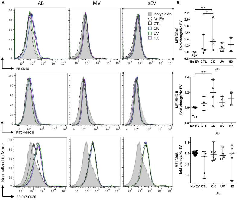 Modulation of co-stimulatory molecules in NOD bmDC by beta AB. NOD Shi mice derived bmDC were incubated for 18 h with AB, MV or sEV derived from 8 × 10 7 MIN6 cells. (A) Flow cytometric analysis of the expression of the CD40, MHC II, and CD86 activation markers. Histograms with dashed lines represent bmDC treated with AB derived from cytokine beta cells. Histograms with solid lines represent bmDC treated with AB from untreated beta cells. Gray histograms represent isotypic controls. Data from one representative out of 2–5 independent experiments are shown. (B) Scatter plots show the median fluorescence intensity (MFI) of co-stimulatory molecules expression in bmDC after AB treatment normalized to No EV controls (median with range). Tukey's range test * P