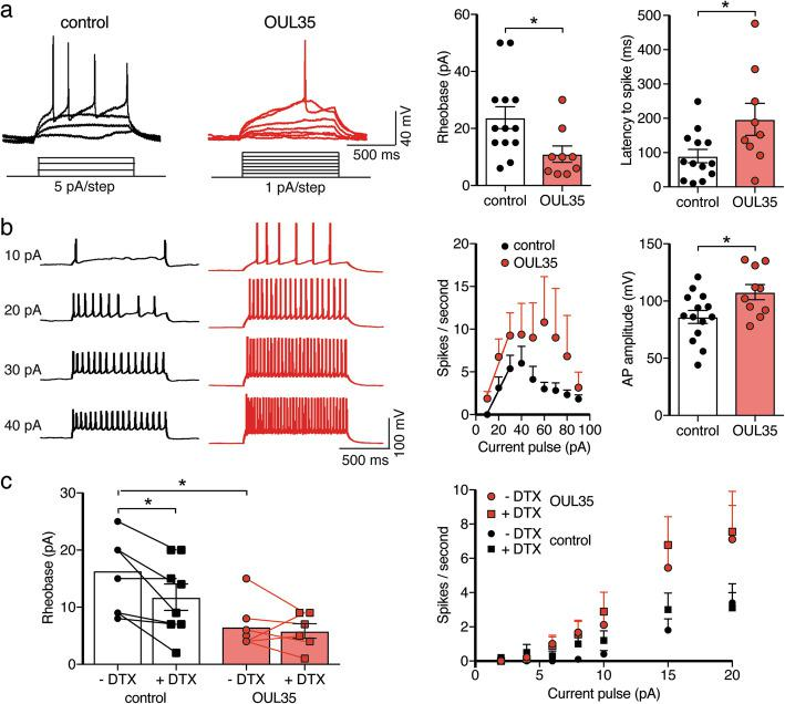 ARTD10 inhibition enhances excitability of hippocampal neurons via Kv1.1. a Left, representative current clamp recordings of APs elicited by step current pulses in control neurons and neurons treated with OUL35. Right, bar graphs represent the rheobase and the latency to the first spike. For cells with a RMP more positive than − 60 mV, the membrane potential was adjusted to ~ − 60 mV. b The number of spikes elicited by step current pulses were counted and for stimuli from 10 to 30 pA they were fitted with a linear function. Right, bar graphs summarize the AP amplitude from neurons with and without OUL35 treatment. c Left, bar graphs representing the rheobase. Right, summary of spikes/s with and without the Kv1 inhibitor α-dendrotoxin (DTX) and from neurons with and without OUL35 treatment. * p