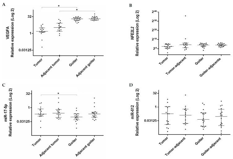 Expression levels of ( A ) VEGFA ( Vascular Endothelial Growth Factor A ), ( B ) NFE2L2 (Nuclear Factor (Erythroid-derived 2)-Like 2 ), ( C ) miR-17-5p, and ( D ) miR-612 in tumor and goiter tissues and their respective adjacent tissues. Data are presented as median with interquartile range (25% percentile and 75% percentile). The relative expression value was Log2 transformed ( y -axis). Calibrator (normal tissue) log RQ = 1. *, Statistically significant (panel A, Mann–Whitney, p