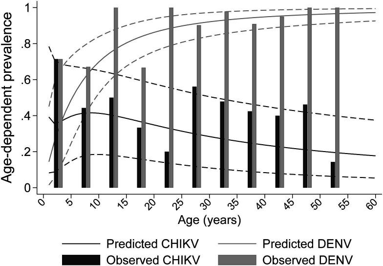 Predicted age-dependent seroprevalence for dengue and chikungunya. Dashed lines represent the 95% credible intervals and the bars represent the observe proportions of seropositive participants. <t>CHIKV,</t> chikungunya virus; <t>DENV,</t> dengue virus.