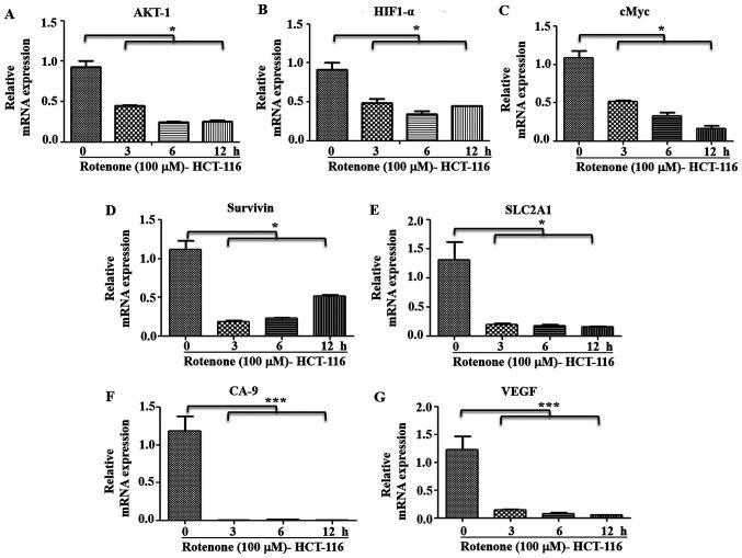 Effect of C-I inhibition on metastatic signaling. HCT-116 cells were treated with rotenone (100 µM) for indicated time points, and RNA was used for reverse transcription-quantitative PCR. mRNA expression levels of (A) AKT-1, (B) HIF1-α, (C) cMyc, (D) Survivin, (E) SLC2A1, (F) CA-9 and (G) VEGF genes were analyzed using SYBR green dye. Fold changes were calculated relative to non-treated control at 0 h. *P