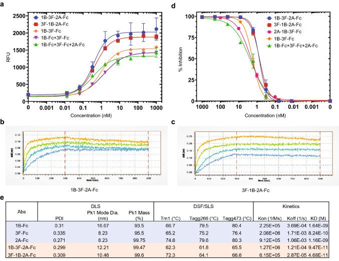 Tri-specific VHH-Fcs show potent S1 RBD binding and S/ACE2 blocking activity, and favorable developability features. ( a ) Binding of multi-specific and monoclonal VHH-Fcs to SARS-CoV-2 S1 protein at different concentrations was assessed in duplicates using an ELISA method. The binding signal is based on fluorescence, indicated as Relative Fluorescence Units (RFU). Error bars represent standard deviation. The graph was generated by the Prism (GraphPad) software (Prism version 8.4.3. https://www.graphpad.com/scientific-software/prism/ . Requires permission to be used). ( b , c ) Binding kinetic graphs for tri-specific VHH-Fcs were obtained by biolayer interferometry (Gator). B and C represent the graphs for 1B-3F-2A-Fc and 3F-1B-2A-Fc, respectively. ( d ) Blocking of SARS-CoV-2 S/ACE2 interaction by multi-specific and monoclonal VHH-Fcs at different concentrations was assessed in duplicates using an ELISA method. Percent inhibition was calculated based on the blocking signal in RFU for each VHH-Fc treatment. Error bars represent standard deviation. The graph was generated by the Prism (GraphPad) software (Prism version 8.4.3. https://www.graphpad.com/scientific-software/prism/ . Requires permission to be used). ( e ) Developability features examining the biophysical and chemical characteristics of VHH-Fcs using DLS (Dynamic light scattering), DSF (Differential scanning fluorimetry), SLS (Static light scattering). The kinetic values were obtained by biolayer interferometry (Gator).