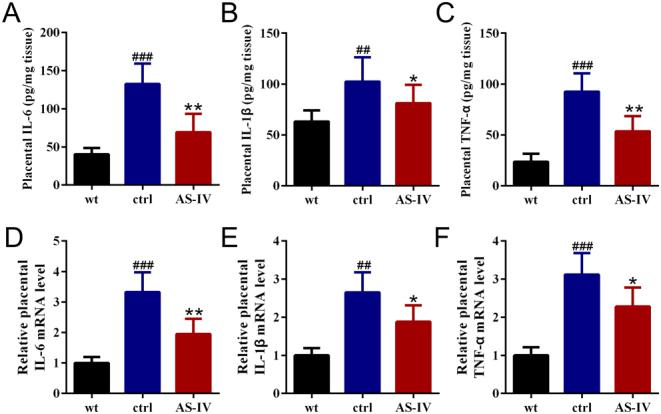 Astragaloside IV reduced placental inflammation in the late stage of pregnancy in GDM mice. ELISA was used to analyze the levels of IL-6 (A), IL-1β (B) and TNF-α (C) in placenta on GD 20. qRT-PCR was used to analyzed the mRNA levels of IL-6 (D), IL-1β (E) and TNF-α (F) in placenta on GD 20. GAPDH was set as a loading control and the relative expressions were normalized to wild type. Data were presented as means ± s.e.m. n = 6 for each group. ## P