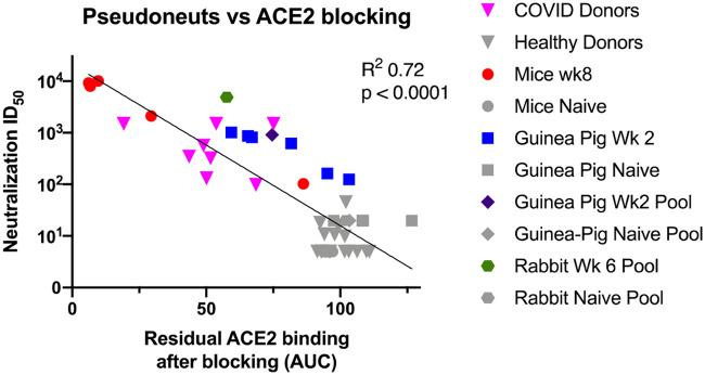 ACE2 receptor blocking correlates with pseudovirus neuralization. A symbol represents each of the individual datapoints where we had a paired AUC blocking and pseudovirus ID 50 values. The human samples are in triangles, the mice in circles, individual Guinea pigs in squares, Guinea pig pools in diamonds, and rabbit pools in hexagons. SARS-CoV-2 spike-experienced samples are shown in color. Naïve samples and healthy donors are shown in gray. Least-squares fit line is shown with P value and R squared from Prism.