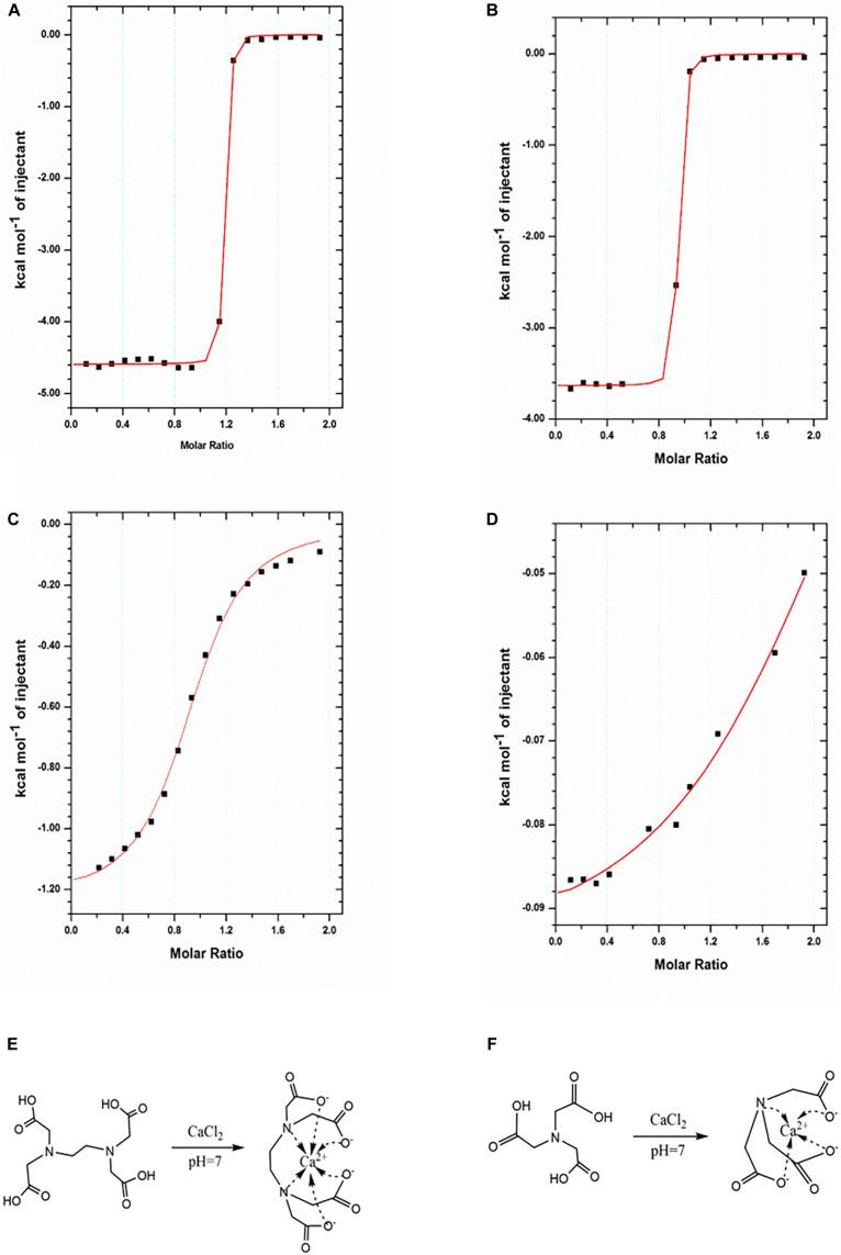 Characterization of binding interactions by ITC. (A,B) ITC titration of <t>EDTA</t> (1 mM) with Ca 2+ ions (10 mM) at 25°C in pH 7 (A) and pH 6.5 (B) . (C,D) <t>NTA</t> (1 mM) with Ca 2+ ions (10 mM) at 25°C in pH 7 (C) and pH 6.5 (D) . The reaction schemes for the formation of the Ca-EDTA complex (E) and Ca-NTA complex (F) .