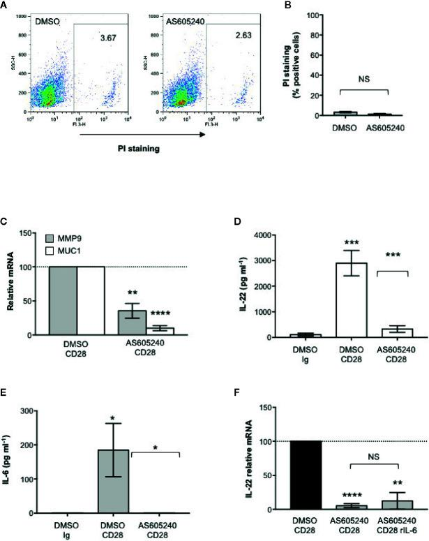 CD28-associated class 1A PI3K regulates IL-22 production and IL-22–mediated epithelial cell functions. (A) CACO-2 cells were cultured for 48 h with DMSO, as vehicle control, or 10 μM AS605240. Cell death was analyzed by flow cytometry by quantifying the ability of cells to incorporate propidium iodide (PI). (B) The percentage of PI positive cells was calculated. Results express the mean ± SEM and statistical significance was calculated by Student t test. (C) MMP9 and MUC1 mRNA levels in CACO-2 cells cultured with medium alone or CD4 + T cells from HD (n = 3) treated with DMSO, as vehicle control, or 10 μM AS605240 and stimulated for 48 h with isotype control Ig or anti-CD28.2 Abs. mRNA levels were analyzed by real-time PCR and, after normalization to GAPDH, fold inductions (F.I.) were calculated over the basal level of CACO-2 cultured with medium alone. Values of CACO-2 cells co-cultured with CD4 + T cells treated with DMSO and stimulated with anti-CD28 Abs were assumed as 100%. Data express the mean ± SEM. Statistical significance was calculated by Student t test. (D) IL-22 levels in culture supernatant, measured by ELISA, of CD4 + T cells from HD (n = 7) treated with DMSO, as vehicle control, or 10 μM AS605240 and stimulated for 48 h with isotype control Ig or crosslinked anti-CD28.2 Abs. Data express mean ± SEM and statistical significance was calculated by Student t test. Mean values: DMSO Ig = 112.1, DMSO CD28 = 2897, AS605240 CD28 = 328.5. (E) IL-6 levels in culture supernatant, measured by ELISA, of CD4 + T cells from HD (n = 7) treated with DMSO, as vehicle control, or 10 μM AS605240 and stimulated for 24 h with isotype control Ig or crosslinked anti-CD28.2 Abs. Data express mean ± SEM and statistical significance was calculated by Student t test. Mean values: DMSO Ig = 0 pg ml −1 , DMSO CD28 = 184.7 pg ml −1 , AS605240 CD28 = 0 pg ml −1 . (F) IL-22 mRNA levels in CD4 + T cells from HD (n = 3) treated with DMSO, as vehicle control, or 10 μM AS605240 and stim