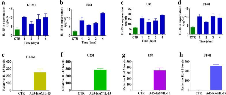 Expression of IL-15 in GBM cells treated with Ad5-Ki67/IL-15. a – d ELISA was used to measure IL-15 levels in conditioned media that different glioma cells were treated with Ad5-Ki67/IL-15 (MOI = 40) for 24, 48, 72, and 96 h. Untreated conditioned medium was used as a control. e – h IL-15 gene expression in GL261, U251, U87 and primary cells BT-01 treated with Ad5-Ki67/IL-15 for 72 h by qPCR. Untreated GBM cells were used as a control