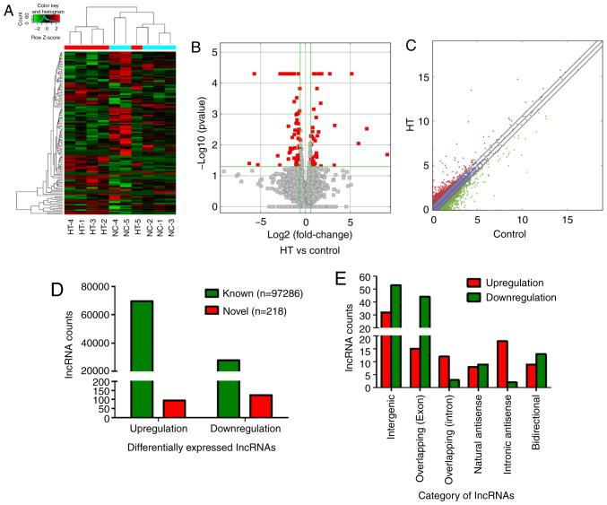lncRNA expression profiles in patients with HT. PBMCs of five patients with HT and five healthy volunteers (controls) were enrolled into next-generation high-throughput sequencing. (A) Hierarchical clustering analysis of differentially expressed lncRNAs. Red and green represented upregulated and downregulated lncRNAs, respectively. (B) Volcano plots and (C) scatter plots were used to distinguish differentially expressed lncRNAs. The red squares of volcano plots represented statistically significant dysregulated lncRNAs. The red dots above the diagonal line in the middle of the scatter plot indicated significantly upregulated lncRNAs, and the green dots below represented significantly downregulated lncRNAs. (D) A total of 97,286 known differentially expressed lncRNAs, including 69,544 upregulated and 27,742 downregulated lncRNAs, were identified. Moreover, 218 novel lncRNAs were identified, 94 lncRNAs were significantly upregulated and 124 lncRNAs were significantly downregulated. (E) Number of upregulated (red) and downregulated (green) lncRNAs according to the categories of formation mode. HT, Hashimoto's thyroiditis; lncRNA, long non-coding RNA.