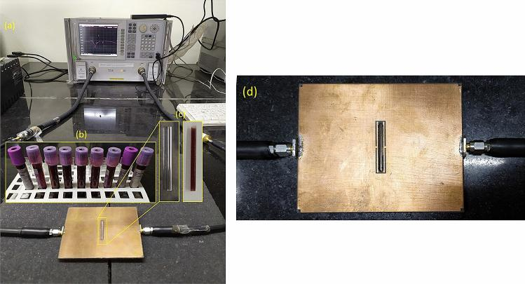 ( a ) Experimental set up showing the sensor connected to the VNA. ( b ) Goat blood samples of different concentrations, collected in <t>K3-EDTA</t> tubes. ( c ) Empty and blood-filled borosilicate glass capillaries used for testing. ( d ) The sensor prototype with the sample filled microfluidic channel placed in the sensing region.