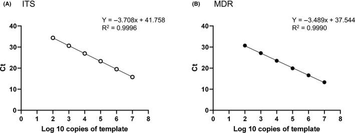 Standard curve for cycle threshold (Ct) versus template DNA copies by qPCR. Serial dilutions of plasmid DNA containing the cloned internal transcribed spacer (ITS) region of rDNA (A) and TruMDR2 (MDR) (B) in Trichophyton interdigitale were tested by qPCR using sets of ITS and MDR primers. Each point represents the mean of triplicate measurements. The standard deviations of each point were too small to show in the graph