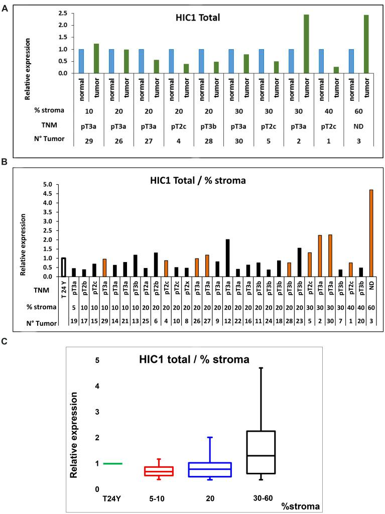 RT-qPCR analyses of HIC1 expression in normal human prostate and human PCa tissues. ( A ) Profiles of HIC1 expression in 10 pairs of cancerous and matched normal prostate tissues. Total RNAs were extracted and quantitative expression of the two major HIC1 isoforms' expression was measured by RT-qPCR analyses. Results are normalized to ALAS1 RNA [ 51 ] or 18S rRNA and are presented as means +/− S.D. from two experiments in triplicate. For each patient, the percentage of normal stroma present in the tumor samples which was used as the ranking criteria is indicated below as well as the TNM staging (see Supplementary Table 1 for details). ( B ) Analyses of HIC1 expression in prostate tumors. A cohort of 20 tumors for which the matched normal tissue was not available was analyzed by RT-qPCR analyses (black column) as described above except that the control corresponded to RNAs extracted from the prostate of a healthy young (24 year-old) donor (Biochain) as control. The 10 tumors used in panel A were also included in this study (orange column). ( C ) Quantification of HIC1 expression in the 30 prostate tumors clustered in subgroups according to their stromal content. HIC1 expression measured by RT-qPCR analyses of the 30 tumors in panel B is represented as box plots in comparison with its expression in a normal prostate tissue obtained from a young 24-years old donor. The box area corresponds to the first and third quartile. The median is shown as a horizontal line in the box. The maximum and minimum values are indicated by the whiskers above and below the box.