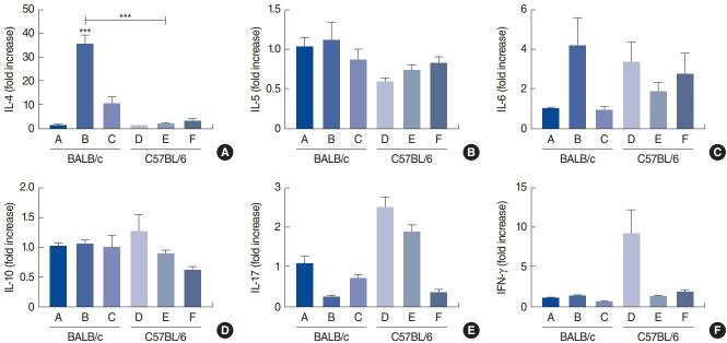 Nasal mRNA expression of cytokines. Shown are interleukin (IL)-4 (A), IL-5 (B), IL-6 (C), IL-10 (D), IL-17 (E), and interferon (IFN)-γ (F) levels in the control group of BALB/c mice (group A), BALB/c mice exposed to 25 µg of Dermatophagoides farinae (Der f1; group B), BALB/c mice group exposed to 100 µg of Der f1 (group C), control group of C57BL/6 mice (group D), C57BL/6 mice exposed to 25 µg of Der f1 (group E), and C57BL/6 mice exposed to 100 µg of Der f1 (group F). Bars represent standard error. Significantly different from control mice or significantly different between strains, *** P